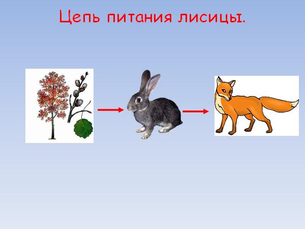 image%2820%29.png