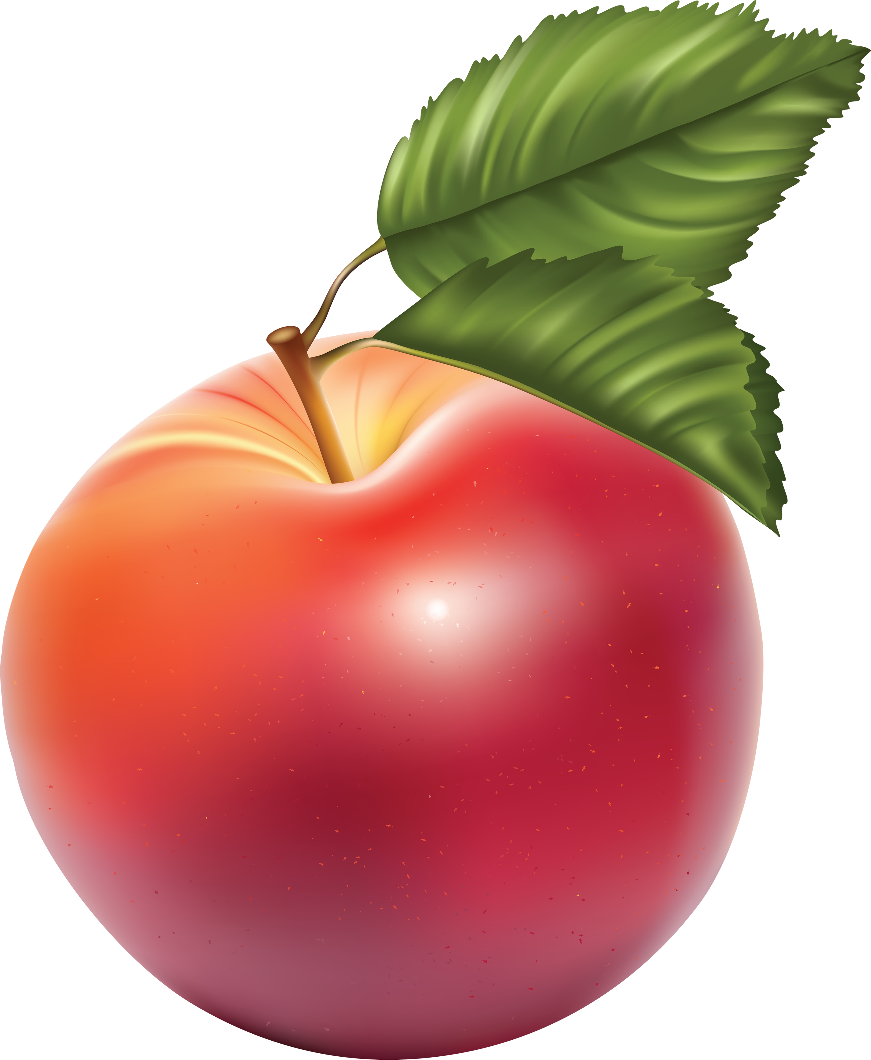 apple_PNG12453%281%29.png