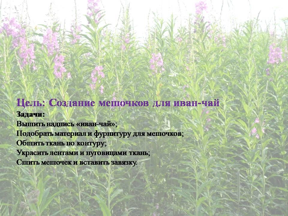 image-20200711011027-4.jpeg