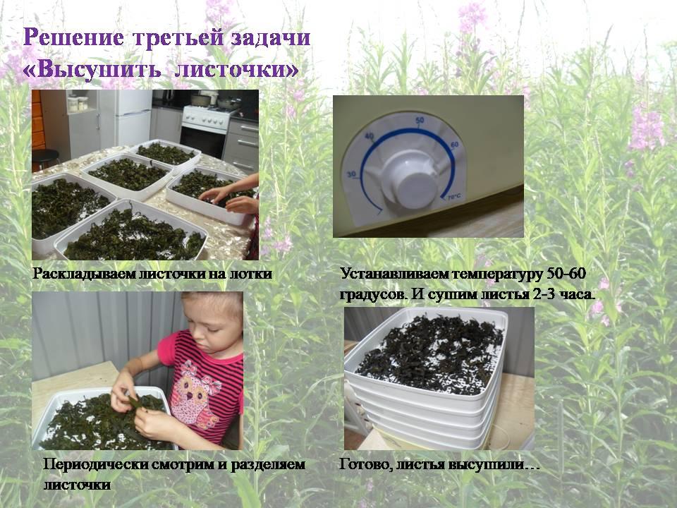 image-20200711011126-23.jpeg