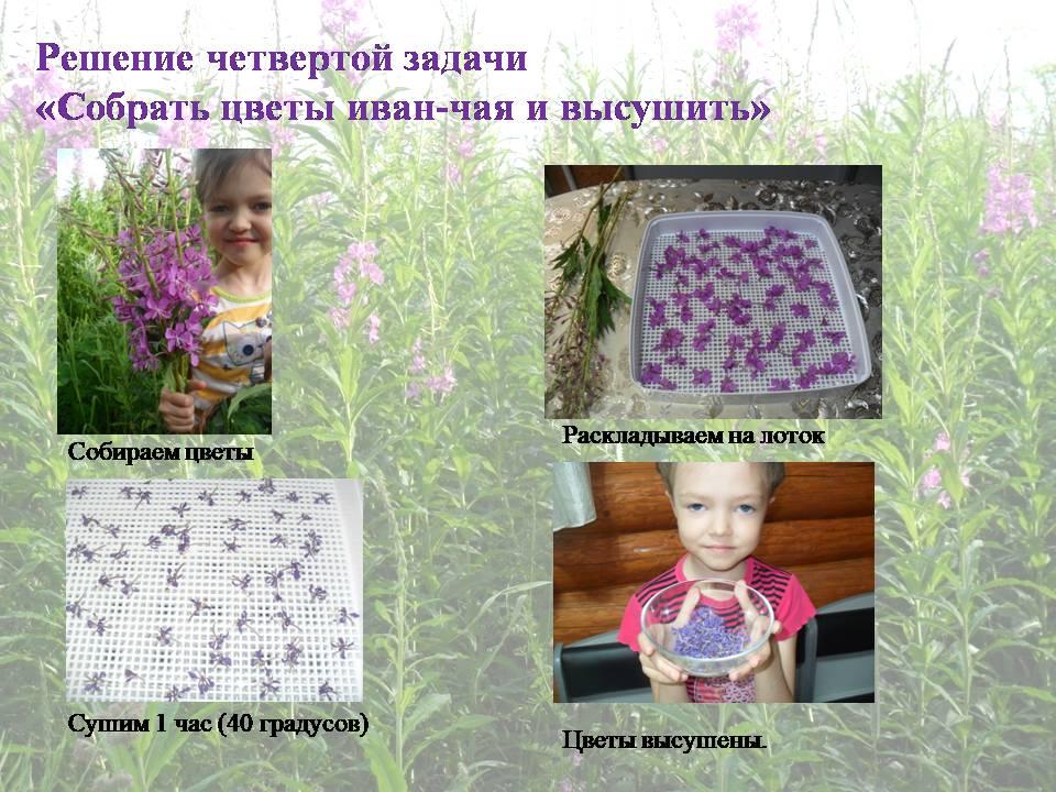 image-20200711011126-24.jpeg
